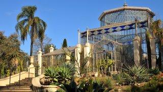 adelaide jardin botanique - voyage australie