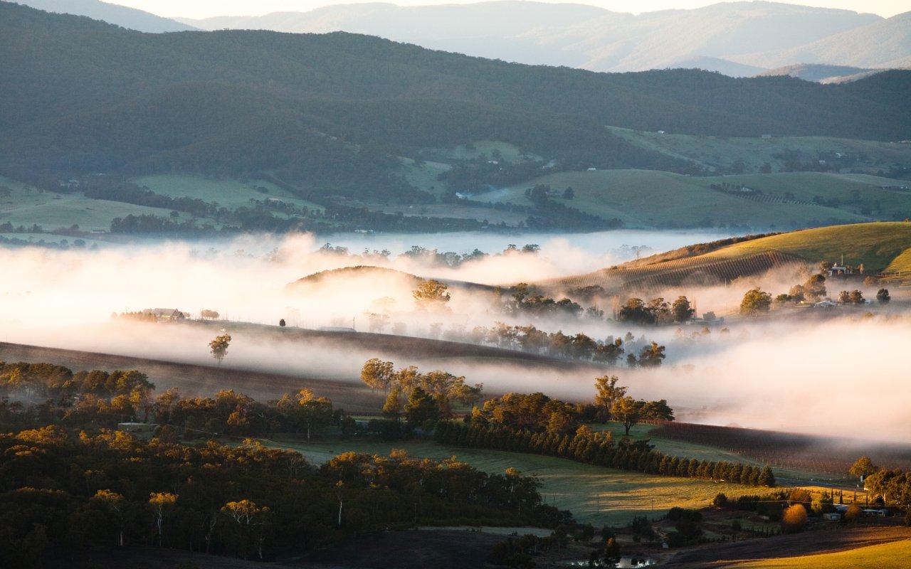 Lever de soleil dans la Yarra Valley