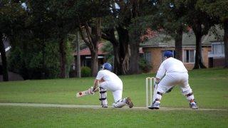 Mode de vie et sport en Australie : le cricket