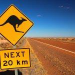 Se déplacer en Australie : la conduite
