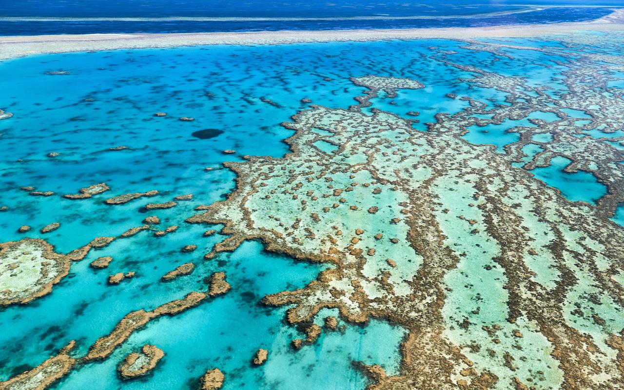 voyage conservation grande barrière - terra australia