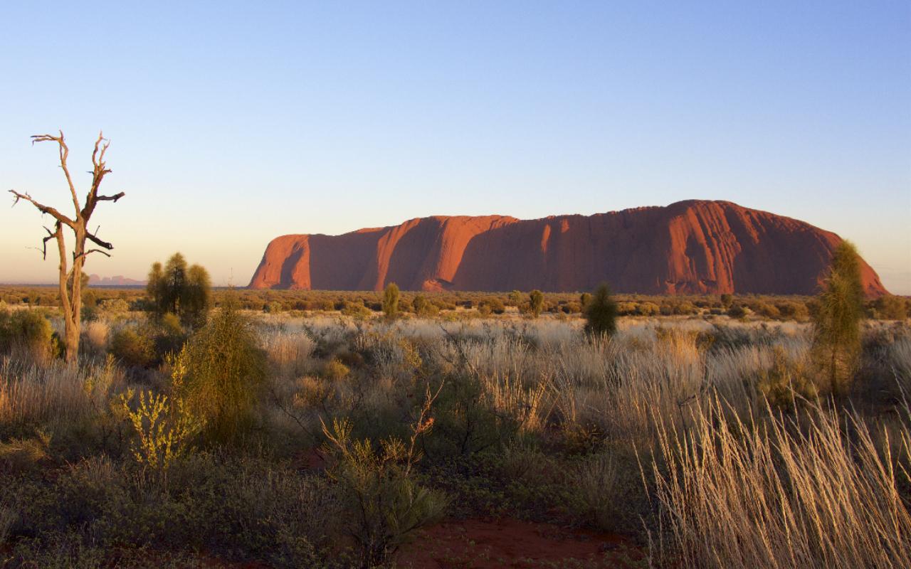 icines australiennes - uluru ou ayers rock - voyage terra australia