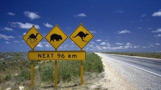 Nature Sauvage d'Australie