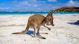 Cape Le Grand - voyage australie terra australia