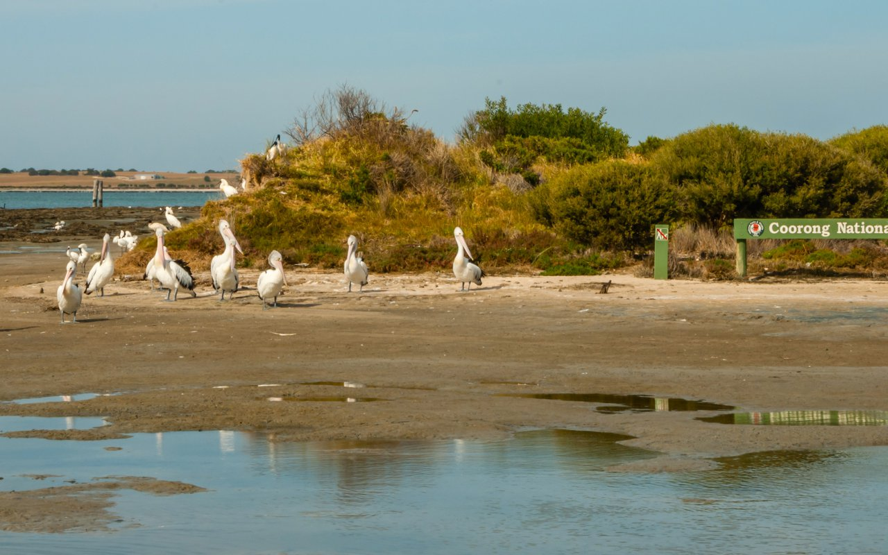 the entrance to the Coorong National Park