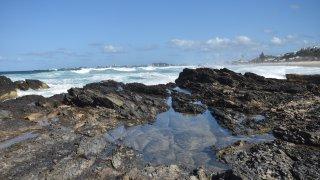 currumbin - voyage australie terra australia