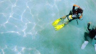 plongée - voyage australie terra australia