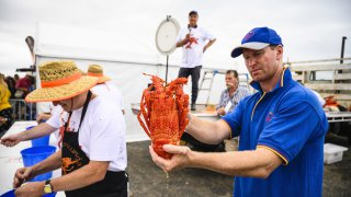 Kilcunda Lobster