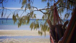 Échappée belle sur Heron Island