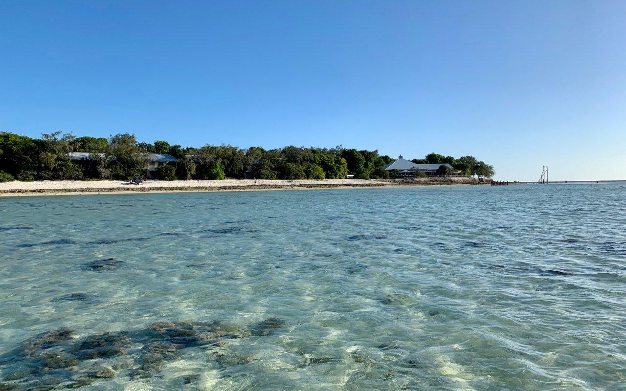 Heron Island - Grande Barrière