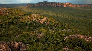 kakadu - voyage australie terra australia