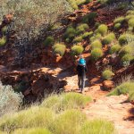 Kings Canyon Rims Walk