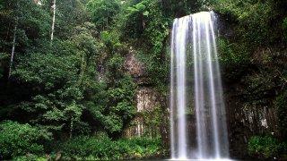 milla milla falls - voyage australie terra australia