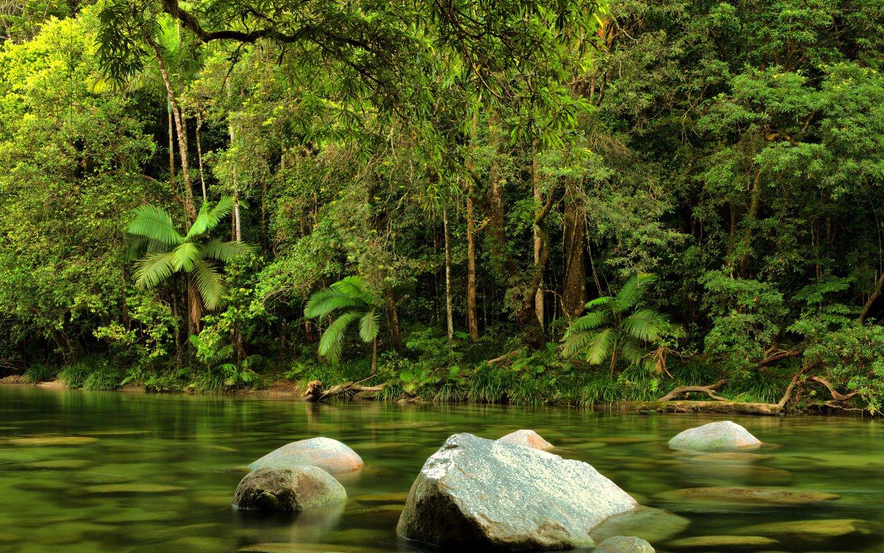 mossman river - voyage australie terra australia