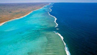 ningaloo reef - voyage terra australia