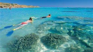 Plongée Coral Bay