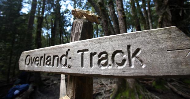 overland track - voyage australie terra australia