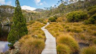 treck overland tasmanie