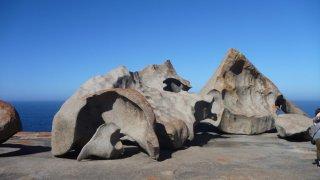 voyage australie - kangaroo island
