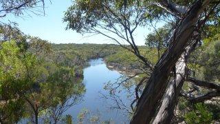 kangaroo island - voyage australie
