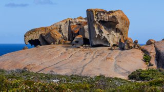 flinders chase national park - kangaroo island