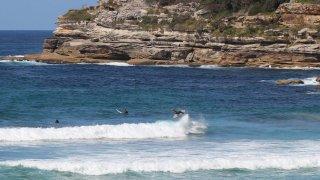 surfers plage de Bondi, Sydney - voyage australie terra australia