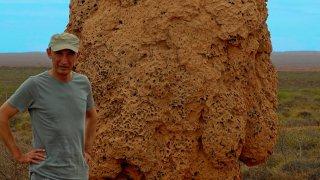 termitière géante exmouth
