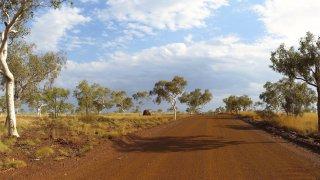 Kimberley : Road trip sur la Gibb River Road en Australie