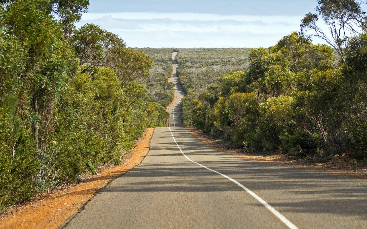 Windy wavy roadway, Cape du Couedic road on Kangaroo Island