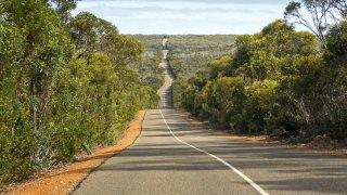 Kangaroo Island, La fabuleuse régénérescence !